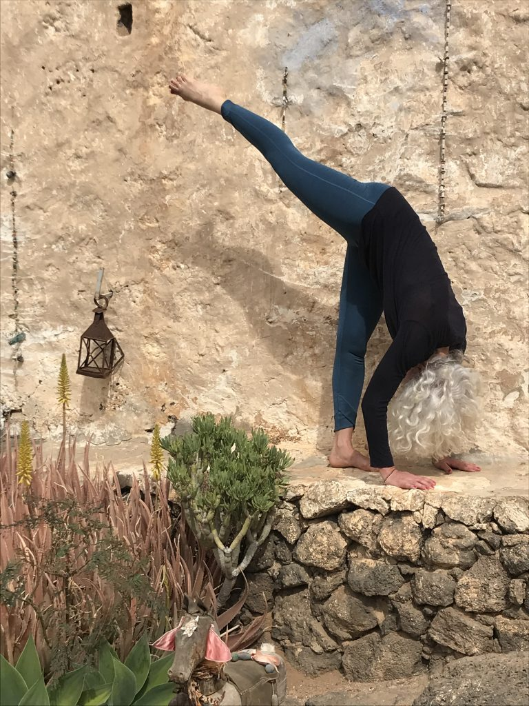 Anastasia Stoyannides online and aligned Hatha Yoga Bien Tempéré Yoga School in Vienna since 1992